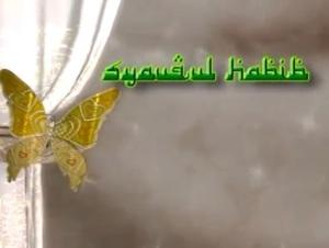Syauqul Habib 2